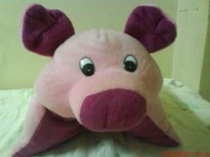 Pillow Piggy