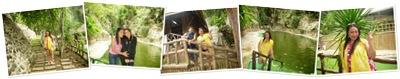 View Eco Park 9