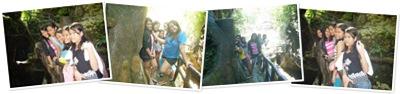 View Eco Park 3